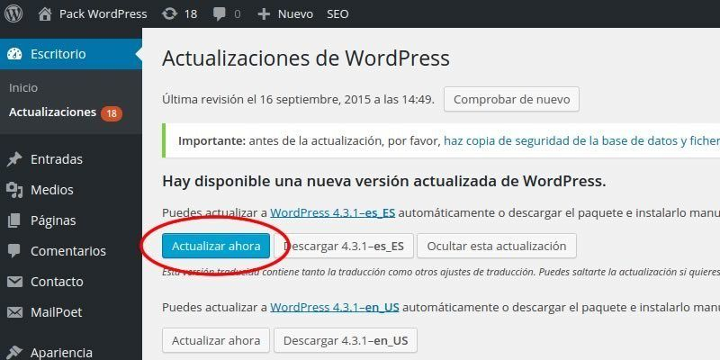 actualizar_wordpress_2